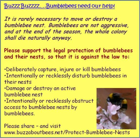 help bumblebees
