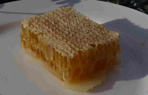 Honeycomb made by honey bees.