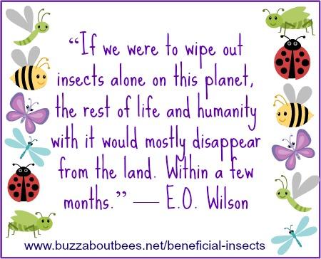 E O Wilson Quote