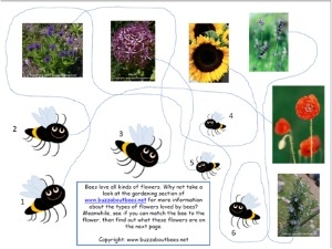 Bee Themed Educational Activity Sheets For Kids