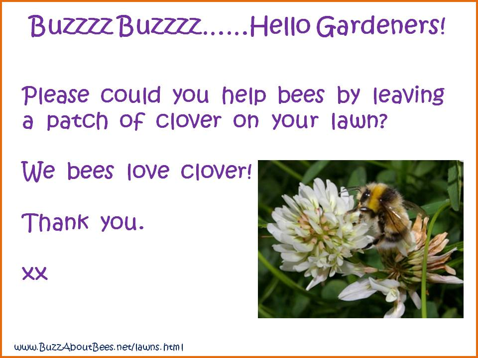 20 Simple Gardening Tips To Help Bees