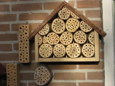 Bee Houses On Our Wall