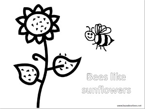 bees with flower blossom a more complex coloring sheet