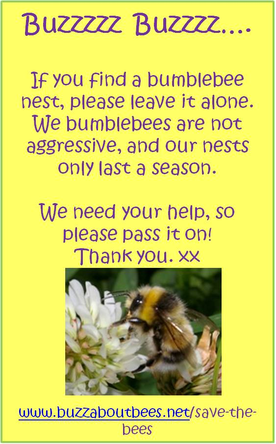 Bee Nest Removal and Bumblebee Nests