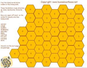 honey comb word puzzle