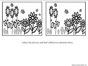 Spot The Difference Bee Coloring Page