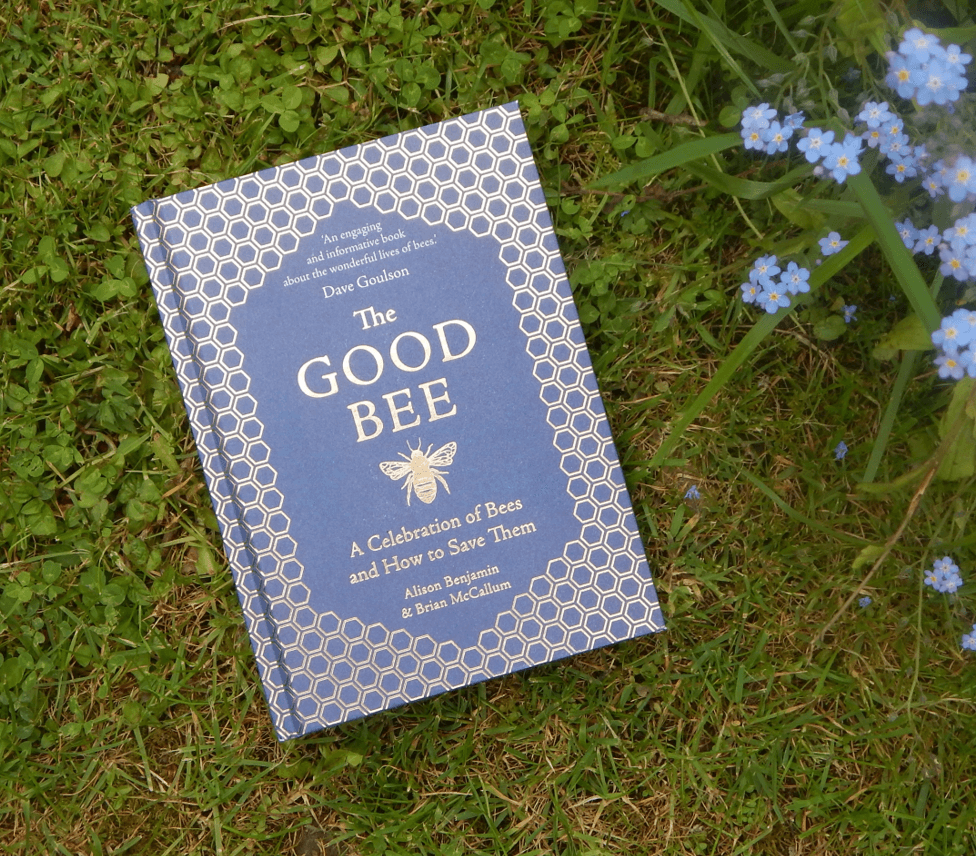 The Good Bee, A Celebration Of Bees And How To Save Them, by Alison Benjamin and Brian McCallum
