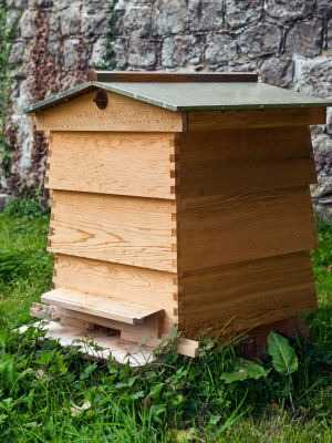 The image below shows a WBC hive, used sometimes in the UK.