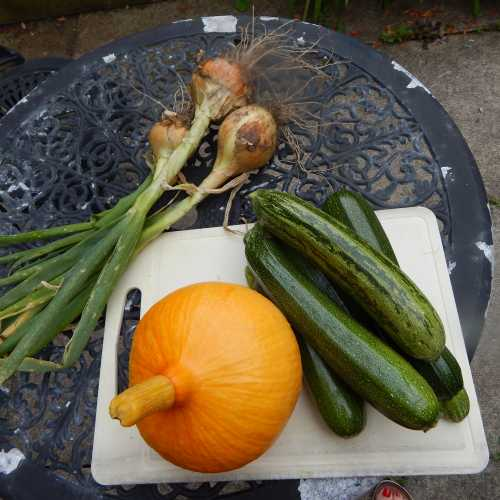 Pumpkins, onions, courgettes are pollinated by bees.