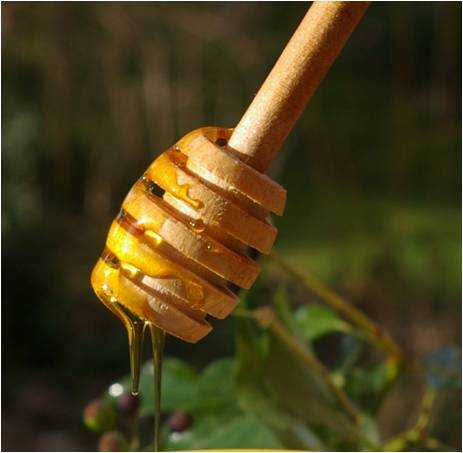 Liquid honey is spreadable and especially easy to use in baking and to spoon onto pancakes.