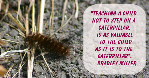 Teaching a child not to step on a caterpillar, is as valuable to the child as it is to the caterpillar - Bradley Miller
